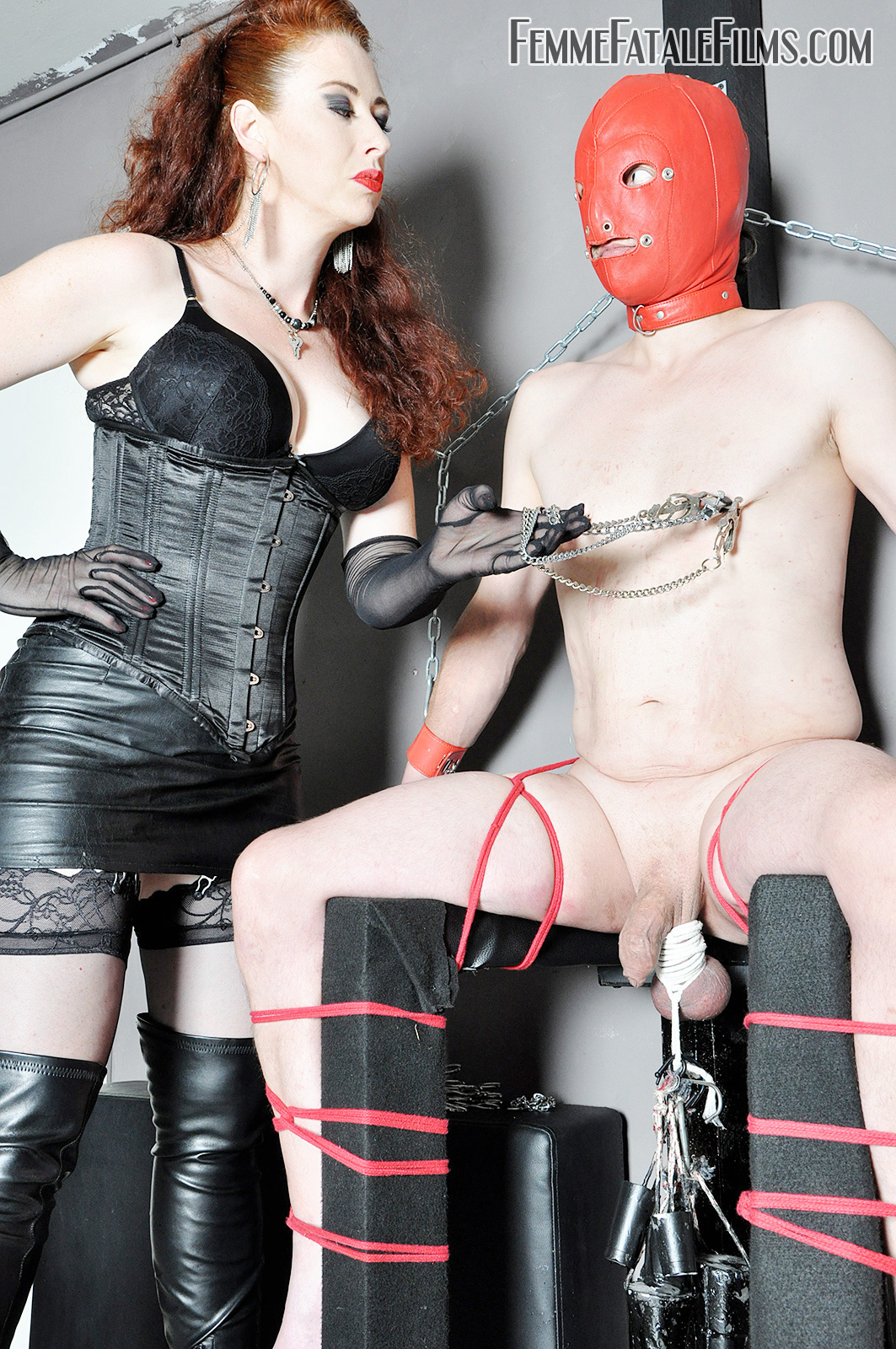 Lady Renee's Cock and Ball Torture