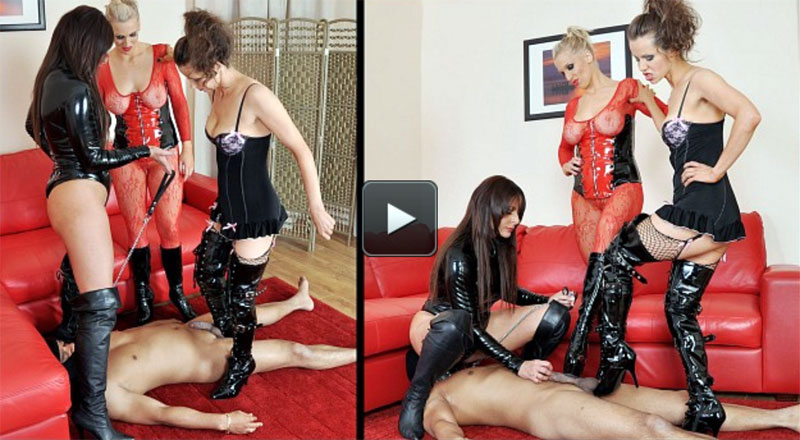 Featuring Goddess Aphrodite, Mistress B, Mistress Carly. The ball-busting Mistresses are back and this time they want their slave to cum while he's getting a good kicking. Sitting on his face, they kick the cum out of him.